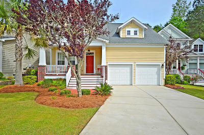 Summerville Single Family Home For Sale: 149 Ashley Bluffs Road