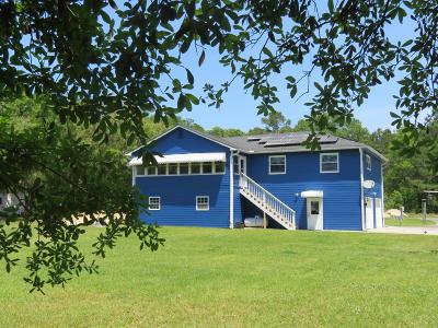 Walterboro Single Family Home For Sale: 4993 Prices Bridge Lane