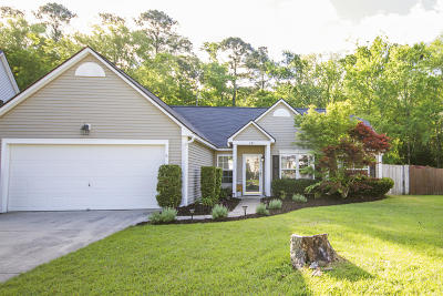 Summerville Single Family Home For Sale: 207 Ashford Circle