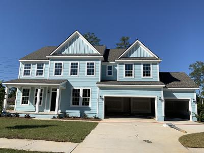 Summerville SC Single Family Home For Sale: $429,062