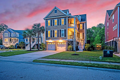 Charleston Single Family Home For Sale: 106 Clouter Creek Drive