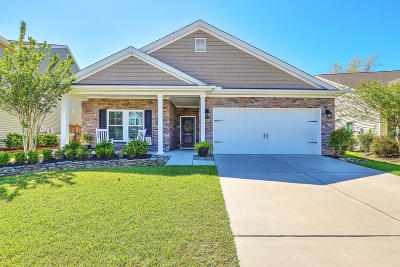 Mount Pleasant Single Family Home For Sale: 1315 Paint Horse Court