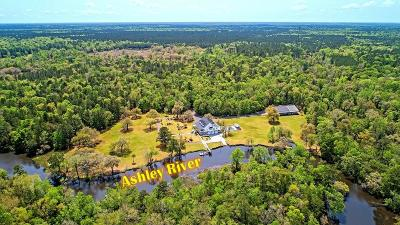 Summerville Single Family Home For Sale: 4852 Ashley River Road