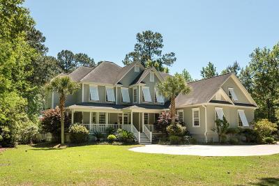 Mount Pleasant Single Family Home For Sale: 3171 Pignatelli Crescent