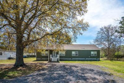 Berkeley County, Charleston County, Dorchester County Single Family Home For Sale: 203 Hammock Street