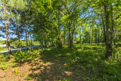 Residential Lots & Land For Sale: Koester Road