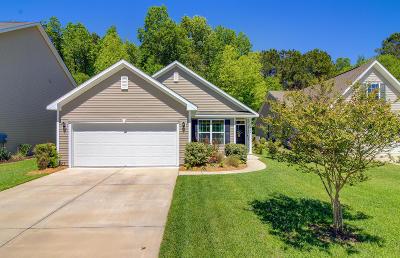 Charleston County Single Family Home For Sale: 5064 Wapiti Way