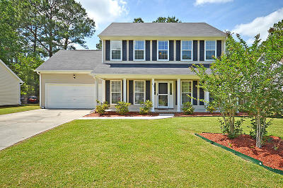 Berkeley County, Charleston County, Dorchester County Single Family Home For Sale: 613 Alwyn Boulevard