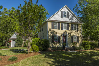 Mount Pleasant Single Family Home For Sale: 915 Law Lane
