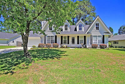 Berkeley County, Charleston County, Dorchester County Single Family Home For Sale: 223 Jasmine Dr