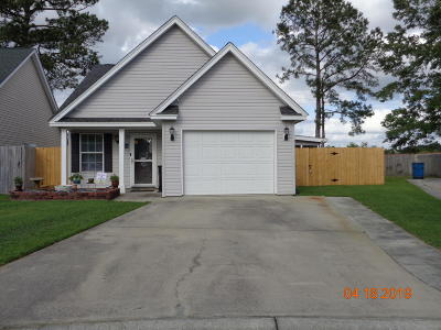 Goose Creek Single Family Home Contingent: 293 Hastings Drive