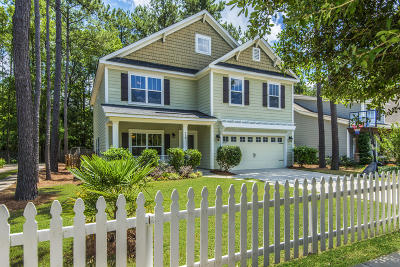 Summerville Single Family Home For Sale: 310 Comiskey Park Circle
