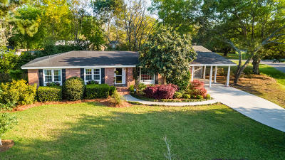 James Island Single Family Home For Sale: 970 Mt Vernon Drive