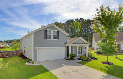 Dorchester County Single Family Home For Sale: 120 Killdeer Trail