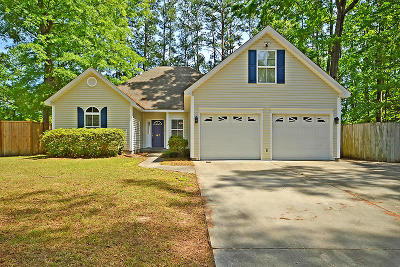 Goose Creek Single Family Home For Sale: 147 Carol Drive