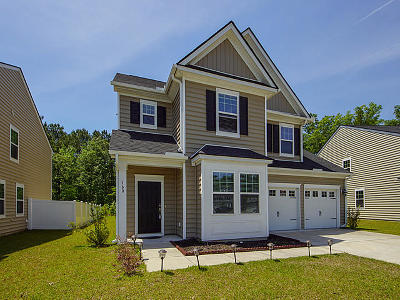 Berkeley County Single Family Home For Sale: 160 Blackwater Way