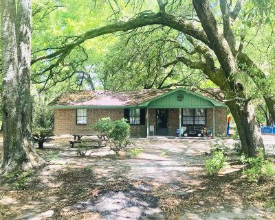Charleston County Single Family Home For Sale: 7330 Mizzell Road