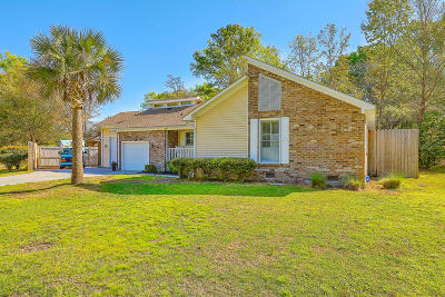 Charleston Single Family Home For Sale: 738 Longbranch Drive