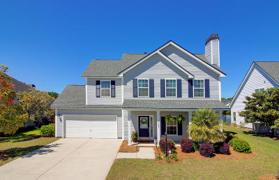 Charleston County Single Family Home For Sale: 1163 Hammrick Lane
