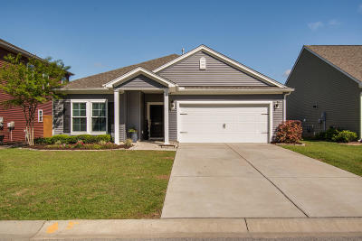 Charleston County Single Family Home For Sale: 3917 Hanoverian Drive