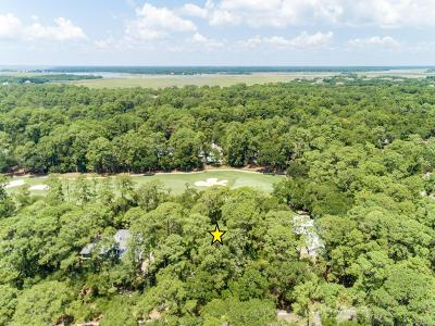 Charleston County Residential Lots & Land For Sale: 3031 Seabrook Island Road