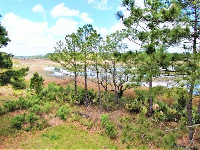 Berkeley County, Charleston County Residential Lots & Land For Sale: 631 Wading Place