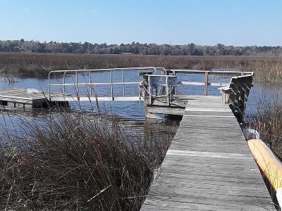 North Charleston Single Family Home For Sale: 8291 Wild Indigo