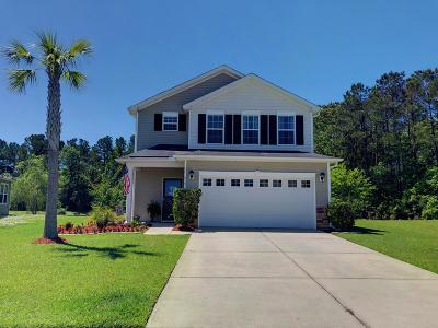 Goose Creek Single Family Home For Sale: 515 Flycatcher Drive