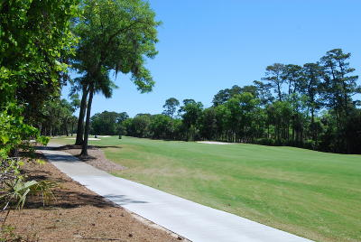Charleston County Residential Lots & Land For Sale: 3120 Baywood Drive
