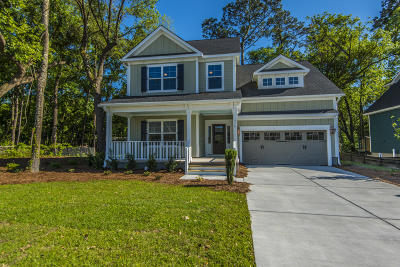 Charleston County Single Family Home For Sale: 978 Foliage Lane