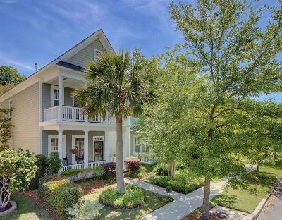 Summerville Single Family Home For Sale: 113 Hyacinth Street