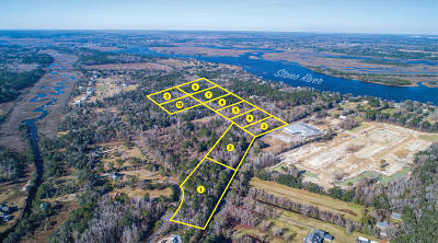 Johns Island Residential Lots & Land For Sale: 5 Amble Hall