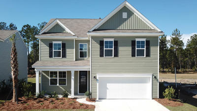 Summerville Single Family Home Contingent: 311 Strabo Court