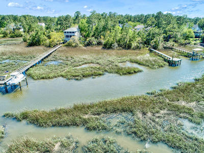 Charleston County Residential Lots & Land For Sale: 1347 River Otter Court