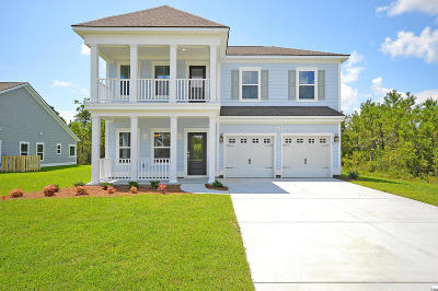 Mount Pleasant SC Single Family Home For Sale: $446,579