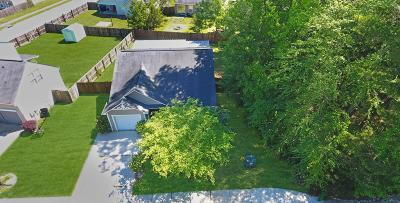 Ladson Single Family Home Contingent: 9464 Netted Charm Court