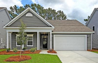 Johns Island Single Family Home For Sale: 1585 Thin Pine Drive