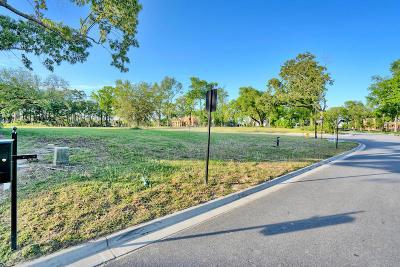 Berkeley County, Charleston County Residential Lots & Land For Sale: 221 Black Powder Lane