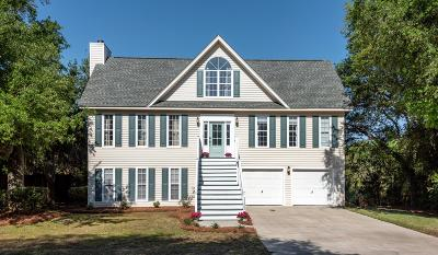 Charleston County Single Family Home For Sale: 1152 Garland Road