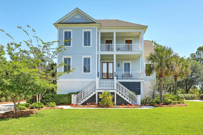 Charleston Single Family Home Contingent: 1244 Blue Sky Lane