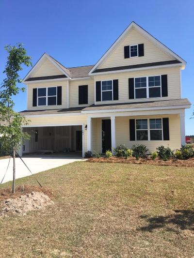 Berkeley County, Charleston County, Colleton County, Dorchester County Single Family Home For Sale: 303 Celestial Boulevard