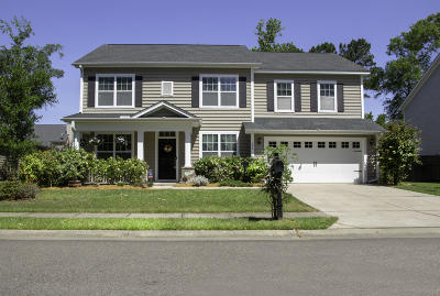 Moncks Corner Single Family Home For Sale: 244 Devonshire Drive