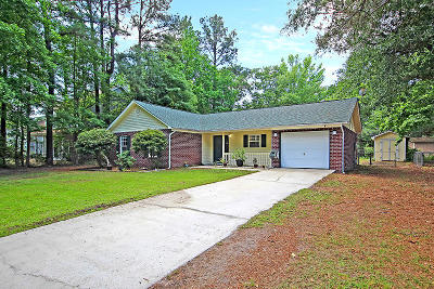 Johns Island Single Family Home For Sale: 2857 Summertrees Boulevard