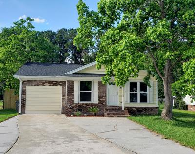 Summerville Single Family Home For Sale: 127 Heather Drive