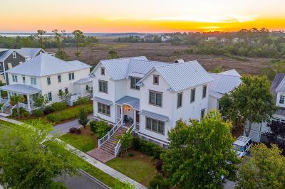 Mount Pleasant Single Family Home For Sale: 825 Bridgetown Pass