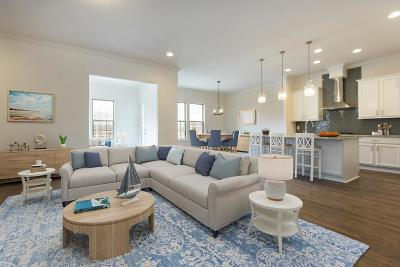 Charleston County Single Family Home For Sale: 2387 Lantern Street