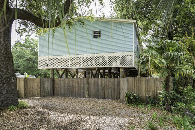 Charleston Single Family Home Contingent: 1621 Wigeon Lane