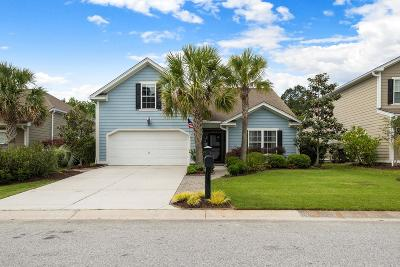 Charleston Single Family Home Contingent: 239 Nelliefield Creek Drive