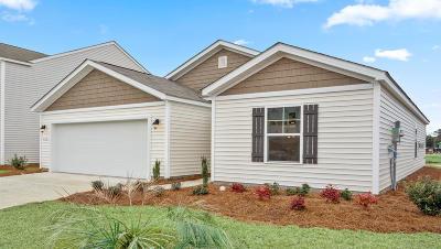 Moncks Corner Single Family Home For Sale: 428 Buckhannon Lane