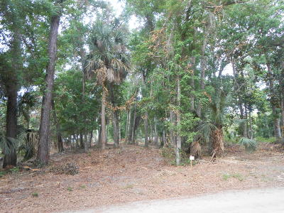 Edisto Beach SC Residential Lots & Land For Sale: $155,000